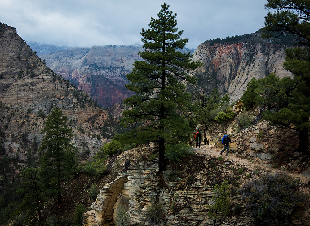 Mickael Sorensen and Peter Johnston climb up the East Rim while backpacking the Zion traverse in Zion National Park Saturday, April 26, 2014.  Photo by Mark Johnston