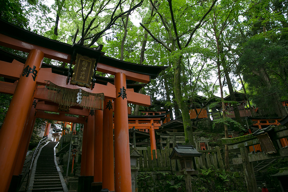 Visiting Fushimi Inari Shrine in historic Kyoto, Japan. Red gates.
