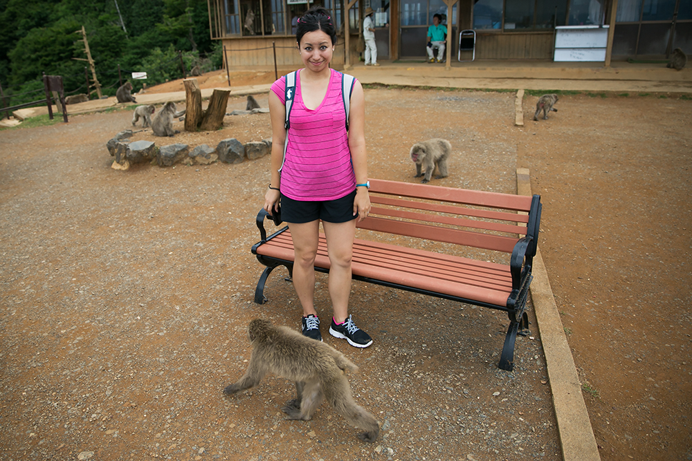 Visiting the monkey park in historic city of Kyoto, Japan.