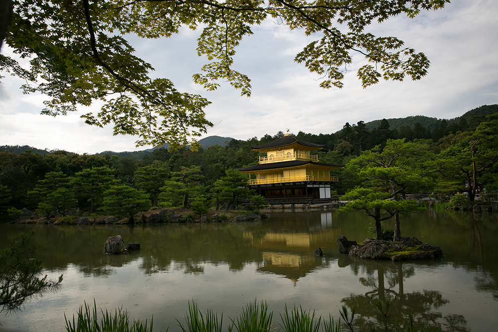 Visiting the Golden Pavilion in historic city of Kyoto, Japan.