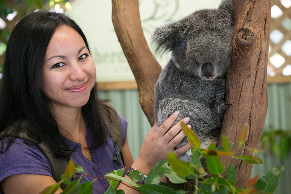 Britnee caught in the act trying to steal a koala from the Featherdale Wildlife Park just outside Sydney, Australia.