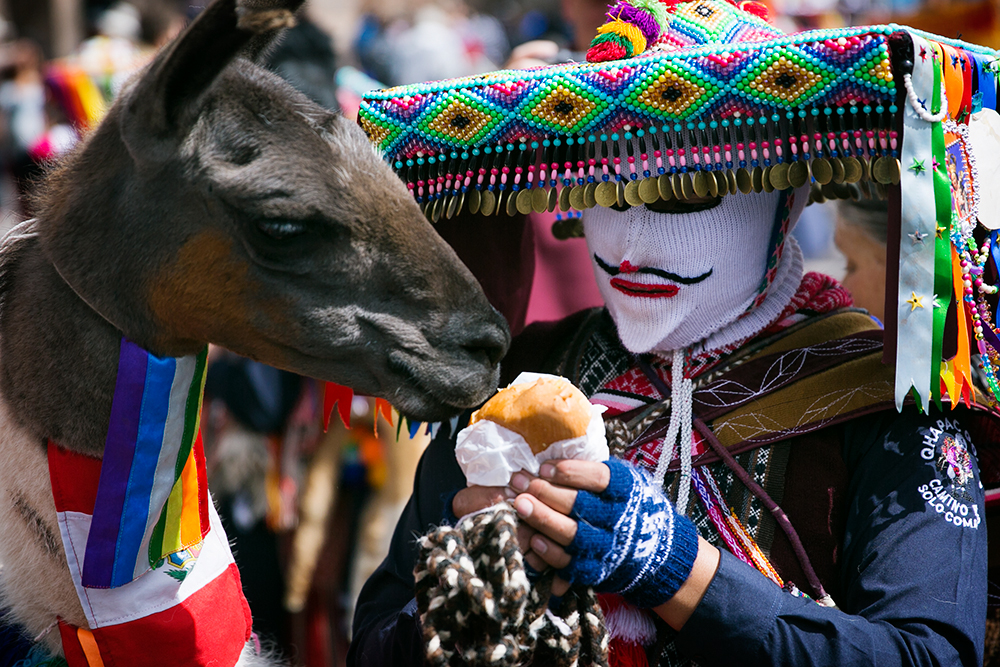 A dancer and his llama during the celebration of Cruz Velacuy in Cusco, Peru.