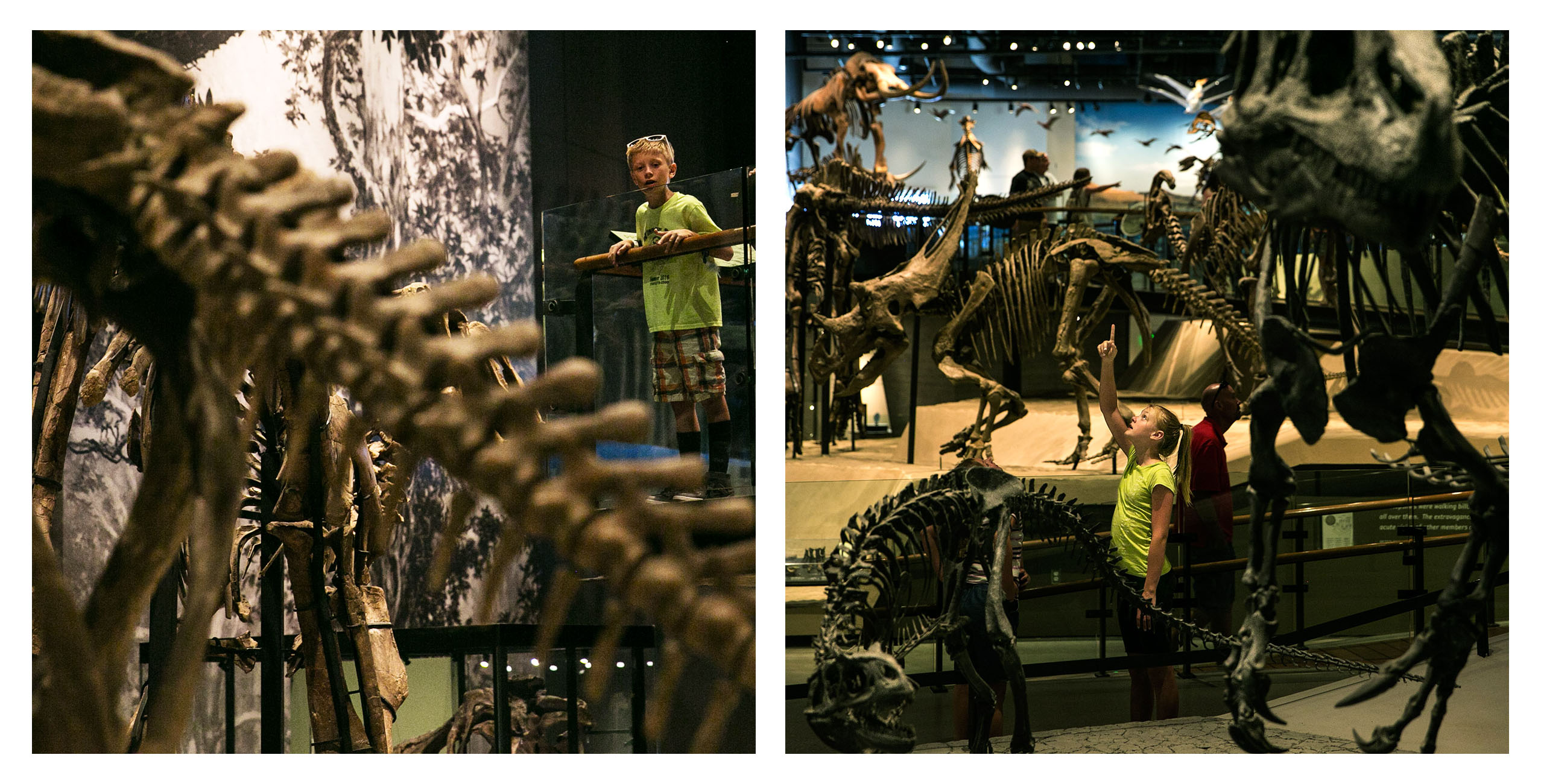 The Natural History Museum of Utah is as much a museum of fine art as it is one of science and discovery.