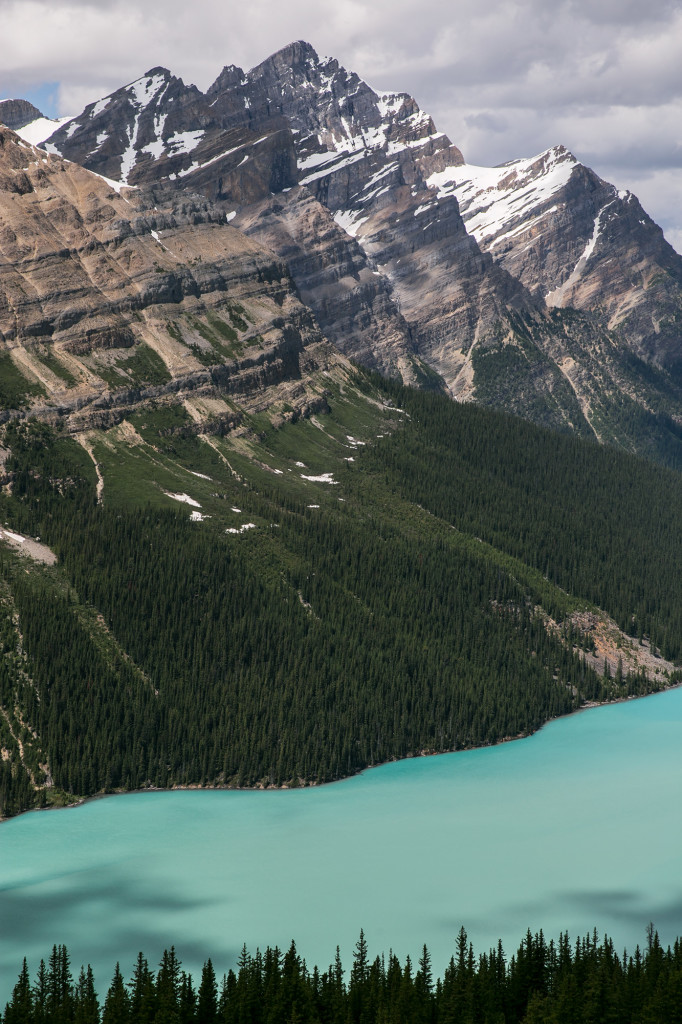 Peyto Lake in Banff National Park.